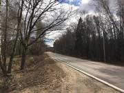 25 соток с лесными деревьями д.Ходаево Чеховский район - Фото 1