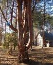 Дом на озере Селигер - Фото 5