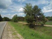 3,5 Га для сельхозпроизводства - 90 км Щёлковское шоссе - д.Лисицыно - Фото 2