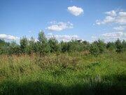 15 сот. ИЖС в 60 км от МКАД по Щёлковскому, Горьковскому шоссе - Фото 3