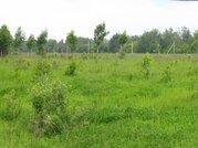 Продается зем. участок сельхозназначения вблизи д.Липитино Озерского р - Фото 3