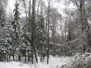 Хутор Рожновка дп «Здравница» лесной участок 20.75 соток - Фото 4