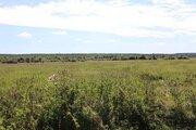 3,7 Га под сельхоз.производство - 95 км Щёлковское шоссе - Фото 4
