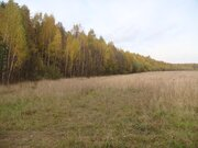 Участок 11 Га, на 1 береговой линии р. Волга, д. Слобода, ИЖС. - Фото 5