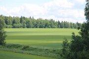 Земельный участок в Дмитровском районе, д. Сурмино! - Фото 1