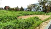 15 соток на берегу Можайского водохранилища, 280 м до воды. - Фото 3