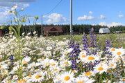 Земельные участки от 10 до 12 соток в живописной жилой д. Тельвяково - Фото 4