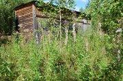 Продается участок у края леса в д. Сергеиково - Фото 3
