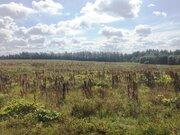 Участок 6,71 га д.Храброво 44 км. от МКАД по Рогачевскому ш. - Фото 2