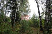 Продается участок в лесу д. Большое Петровское 75 соток - Фото 1