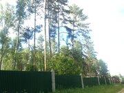 Участок в лесу, Боровск, подъезд асфальт, газ, элитное место - Фото 3