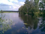 20 соток в живописном месте у озера - в дер. Жиливо (см. видео) - Фото 1