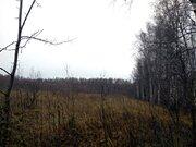 Продам: участок 620 соток, поселок Батюшково - Фото 1