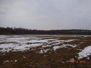 Участок 630 соток, в 5 км. от города Таруса - Фото 5