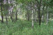 Земельный участок в c. Черленково, Шаховского района - Фото 5