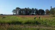 Участок 10 соток в селе Ивановское Ступинского района - Фото 2