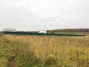 15 соток вблизи д. Кузнецово (ближнее) 60 км от МКАД по Дмитровскому ш - Фото 3