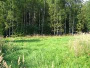 Дачный участок 12 соток, в поселке, Новорижское ш. - Фото 4