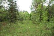 Продается земельный участок 30 соток в д.Шиклово - Фото 2