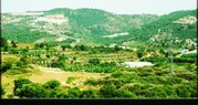 60 000 €, Продажа квартиры, Аланья, Анталья, Купить квартиру Аланья, Турция по недорогой цене, ID объекта - 313158706 - Фото 7