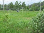 Продается зем. участок сельхозназначения вблизи д.Липитино Озерского р - Фото 4