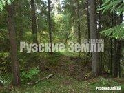 Редкое предложение - лесной участок с собственнымм пляжем - Фото 1