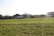 Продается участок 15с. д. Курово, 40 км от МКАД - Фото 4