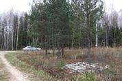 Земельный участок 36 соток в СНТ Клен - Фото 2