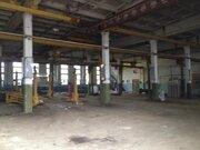 Производственное помещение, 2448 м2 в пос. Горки-9, Дмитровский район - Фото 2