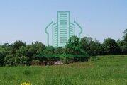 Участок в д. Ильицино Зарайского района 24 сот - Фото 5