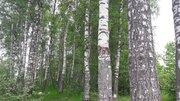 Продается участок в массиве Белоостров - Фото 4