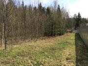 """Участок у леса 8 сот. в ск """"Ельник"""" г.Киржач, 2 км от города. - Фото 3"""