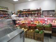 Отдел Мясо- Рыба в магазине в аренду. Москва, Федеративный проспект - Фото 4