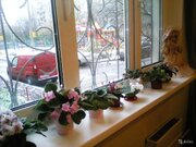 3 к. квартира в центре г. Королев - Фото 4
