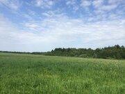 Продаю 2.7 Га в деревне Завязово, Одинцовский район, 14 км от Звениго - Фото 5