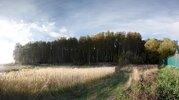 Участок 20 соток в лесу д. Репниково, Чеховский район. - Фото 3