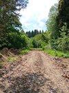 Лесной земельный участок деревня Садки - Фото 4