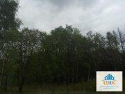 Продается земельный участок 41 сотка, с. Ильинское - Фото 2