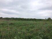 Продается 3, 2 га земли в Ивнянском районе - Фото 5