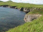 Земя под базу отдыха / Land for recreational facilities - Фото 1