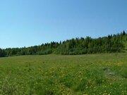 21й километр Приозерского шоссе.