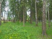 """Лесной участок 40 соток вблизи д. Лисавино кп """"Ласковый Май"""" - Фото 2"""