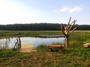 Агро усадьба, Готовый бизнес в Беларуси, ID объекта - 100045072 - Фото 9
