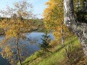 Участок на реке Озерна в окружении леса - Фото 1