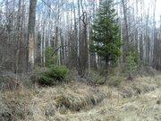 Земельный участок 12 соток ПМЖ, г. Кременки, Калужская область - Фото 5