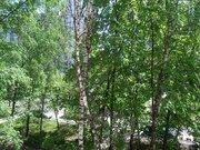 Дом в Абрамцево на лесном участке 24 сотки - Фото 2