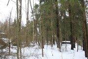 Лсеной участок в стародачном посёлке на Рублёвке по разумной цене - Фото 4