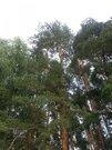 Участок 11 соток в СНТ Литвиново-2 Щелковского р-на, 30 км от МКАД - Фото 3