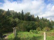 Участок Чеховский район д.Завалипьево - Фото 4