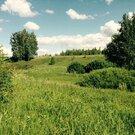 Любителям лесных просторов, грибов, земляники и речки! - Фото 5